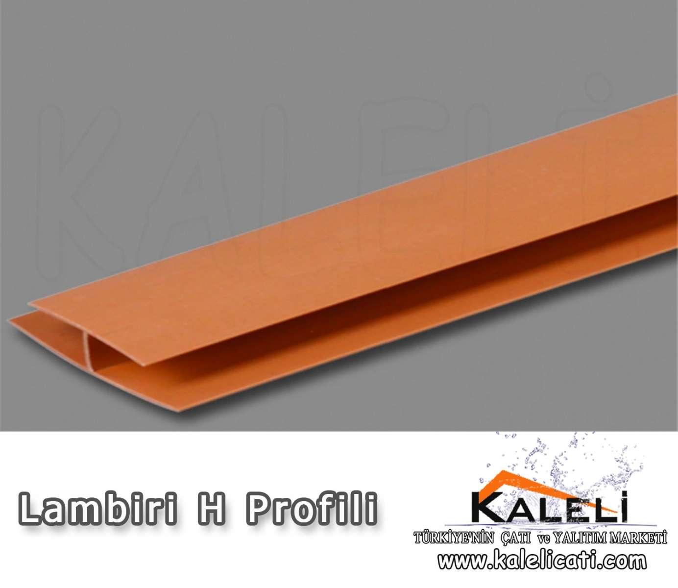 Lambiri H Profili 6m.