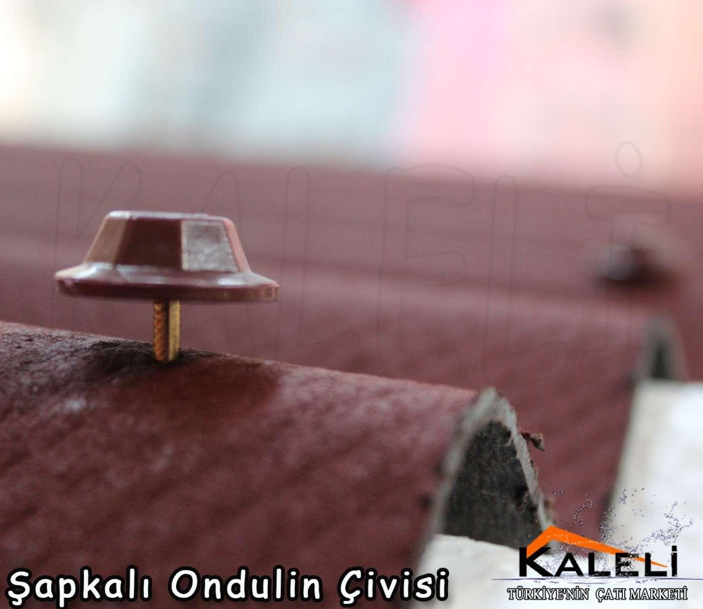 Şapkalı Onduline Çivisi 10 cm